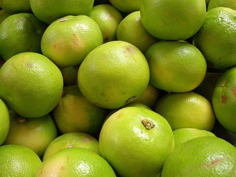 Oranges (fresh, local)